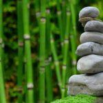 Ładny oraz uporządkowany zieleniec to zasługa wielu godzin spędzonych  w jego zaciszu w trakcie pielegnacji.